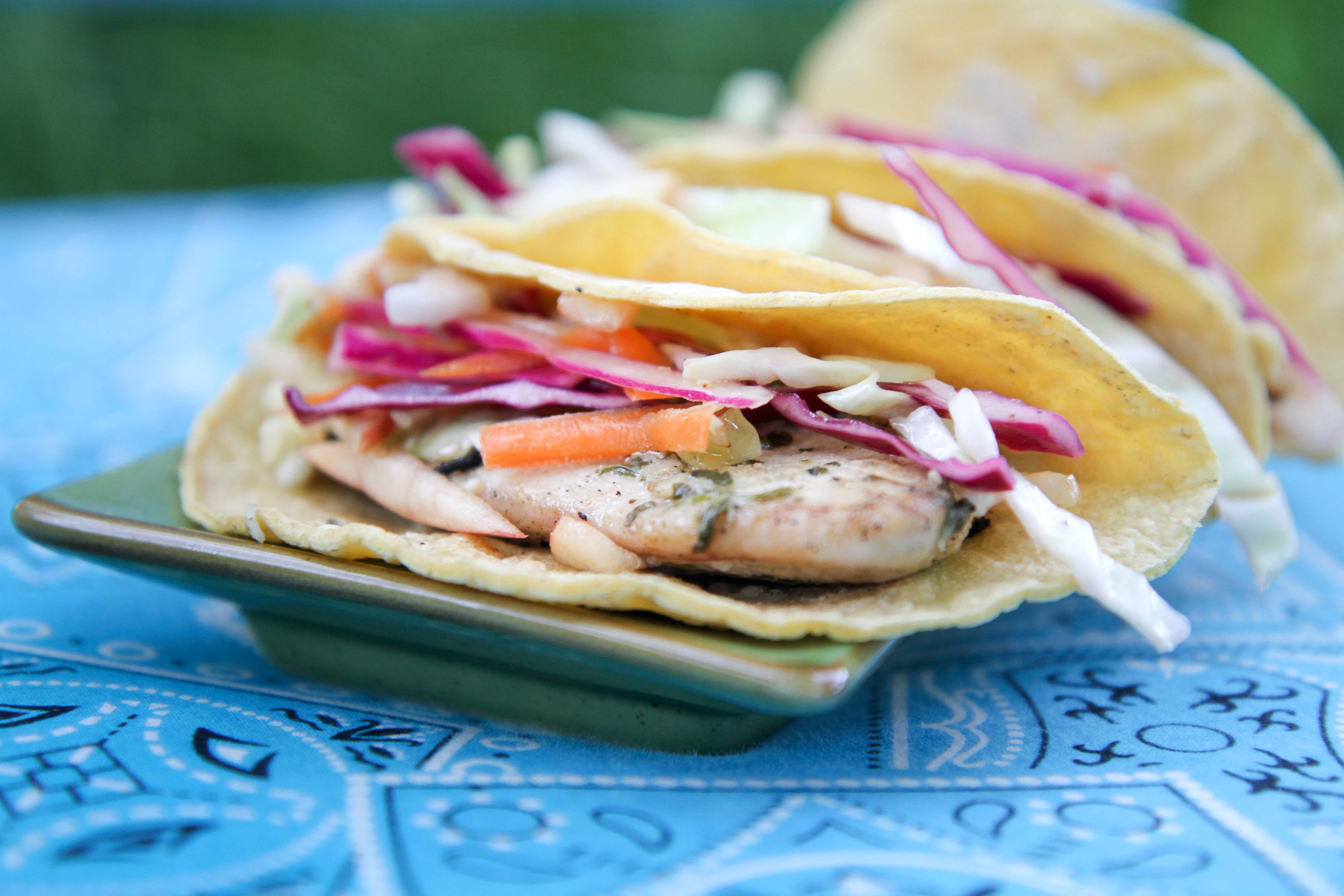 Cilantro Lime Fish Tacos | Braised Anatomy