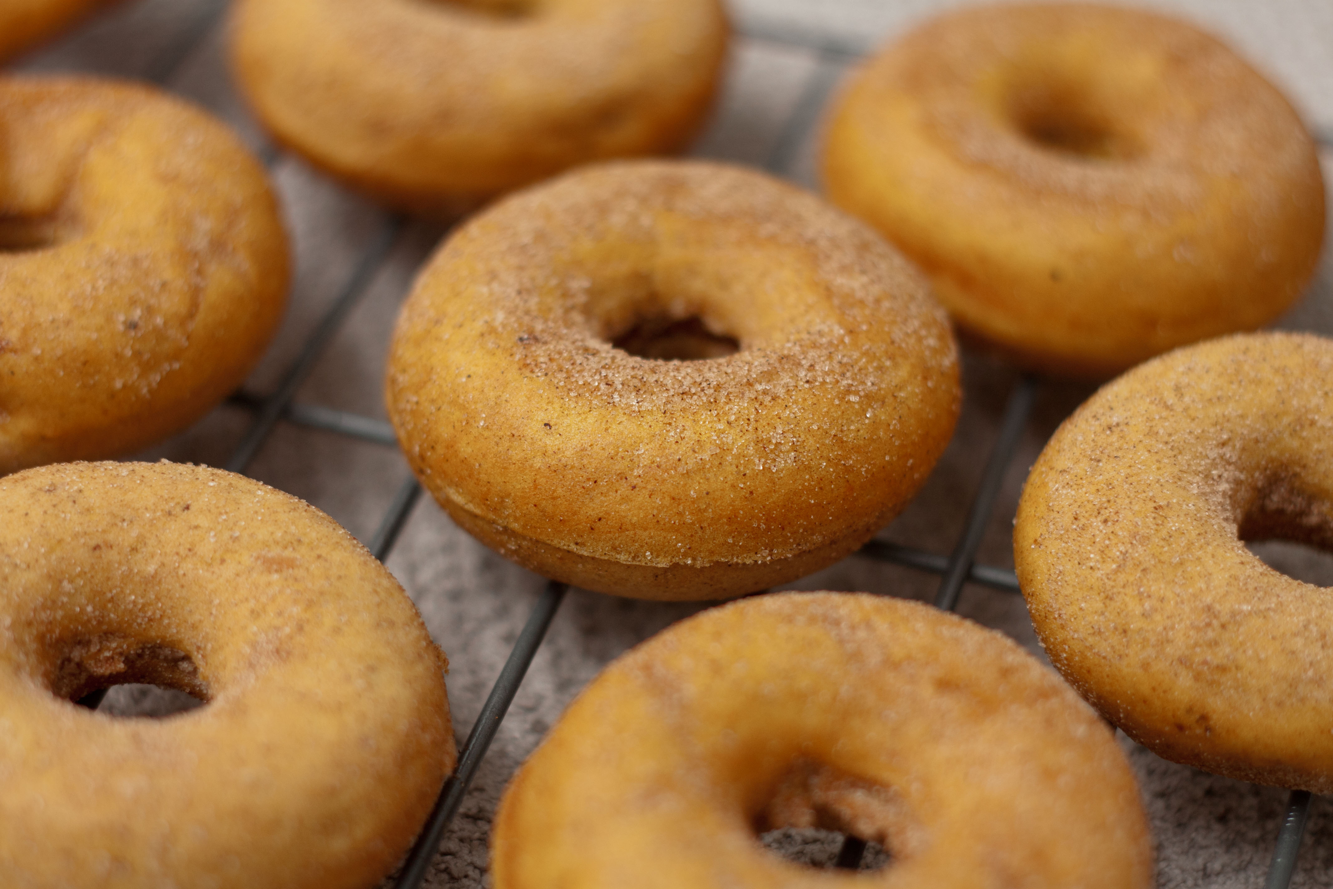 ... curing your baked cinnamon sugar mini baked gingerbread mini donuts